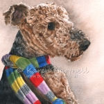 Rosa, Airedale
