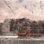 White-tailed Eagles above Loch Leven