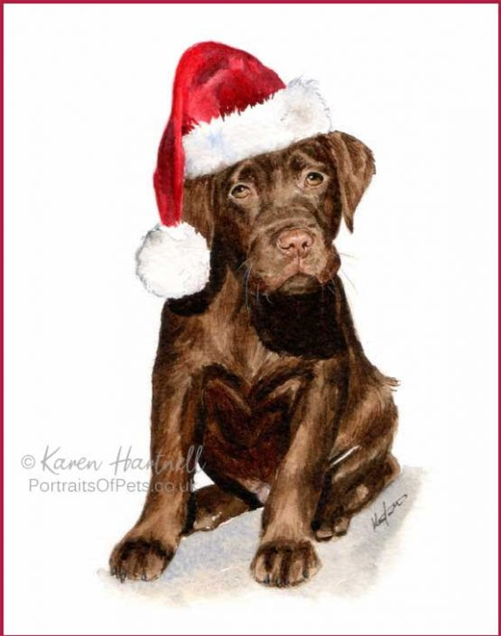 Chocolate Labrador Puppy Christmas Cards