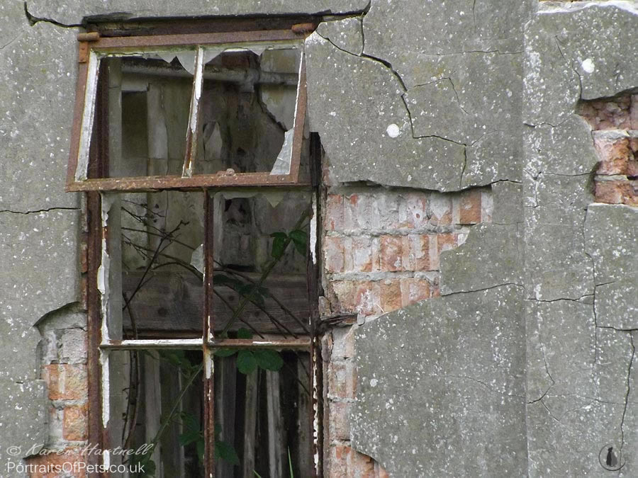 Window details. Second World War building ruins