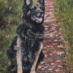 Jarvis, German Shepherd. Acrylics