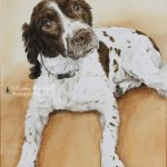 Rosie, Springer Spaniel watercolour