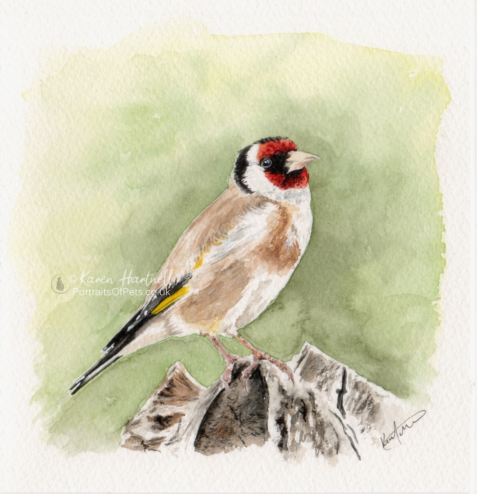 Goldfinch painting