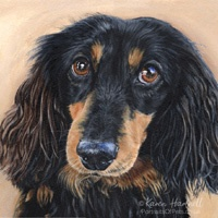 Dog acrylic portraits