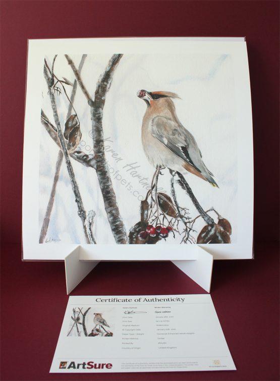 Winter Waxwing Print