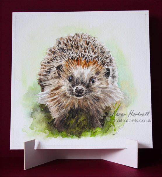 Hedgehog painting